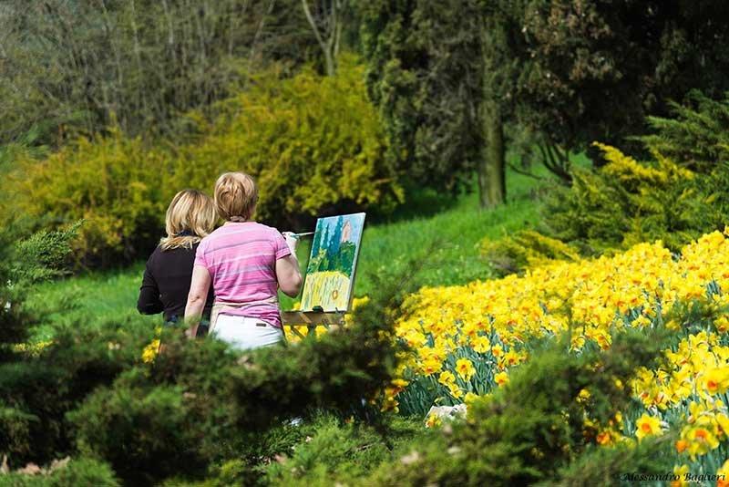 Parco Giardino Sigurtà_parco-giardino-sigurta-(6)_pittura_MilanoPlatinum