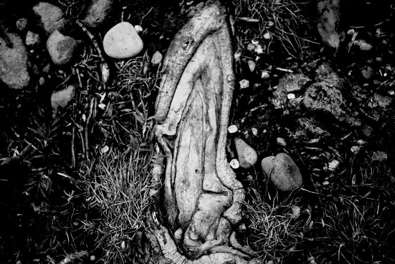 Satanae fallaciis natura. Vagina - anno 2015