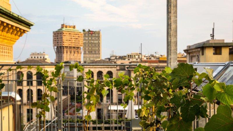 Vigna-in-Highline-018