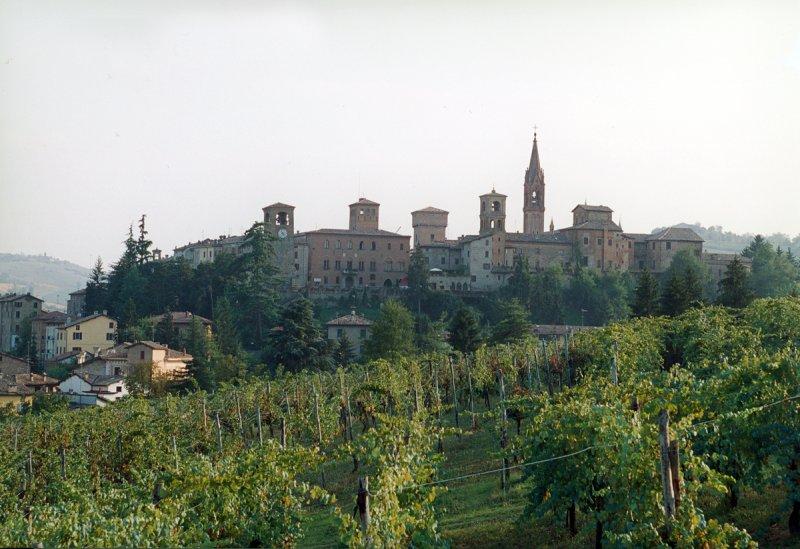 Castelvetro-di-Modena_veduta-castelvetro-e-vigne