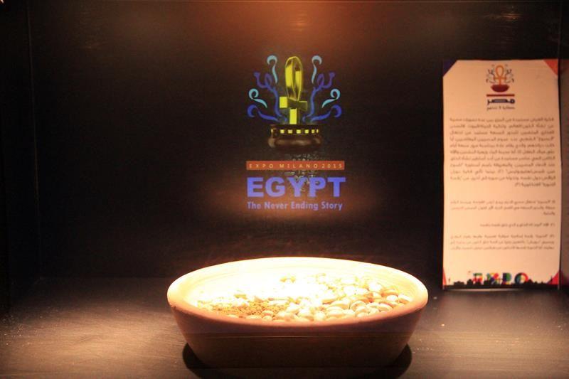 Cluster Bio Mediterraneo Expo 2015 - Egitto 06