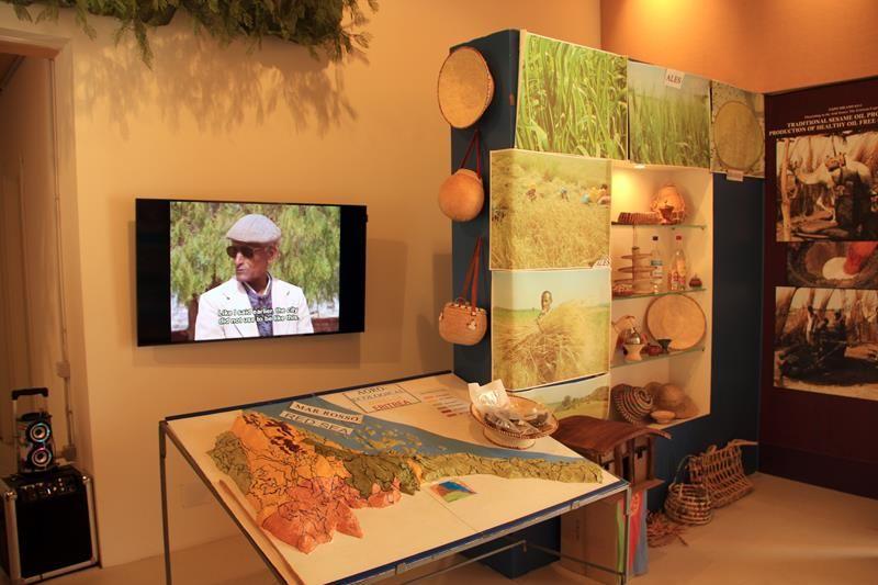Cluster Zone Aride Expo 2015 - Eritrea 04