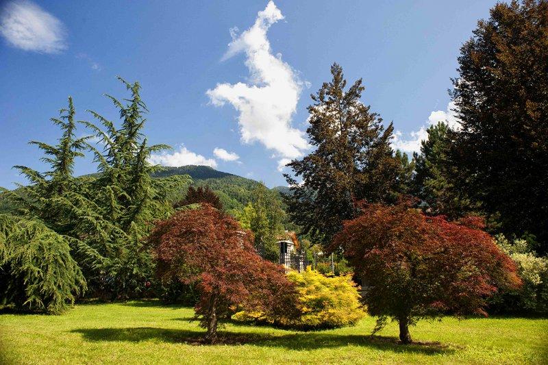 Forest-therapy-grand-hotel-imperial-di-levico-foto-E.-DeLuca