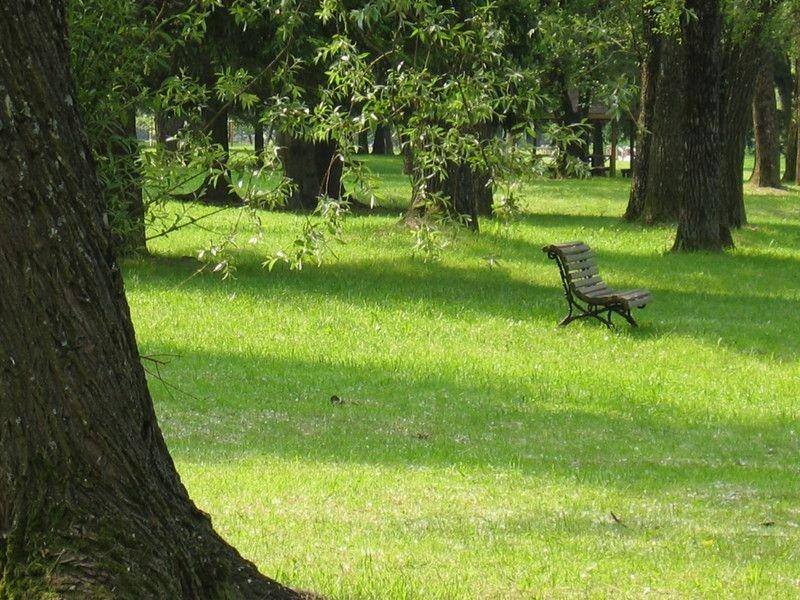 Parco-panchina-Levico-foto-Angela-Ventin