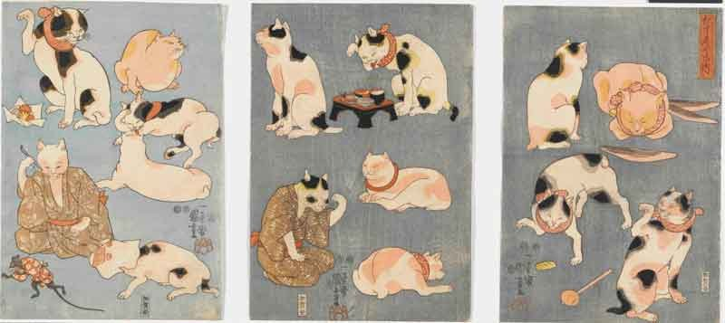 Utagawa Kuniyoshi Proverbi illustrati [con i gatti] (Tatoe zukushi no uchi) 1852 silografia policroma(nishikie) 35,2x24,4; 35,2x24,6; 35,3x24,5 cm ciascuno Masao Takashima Collection
