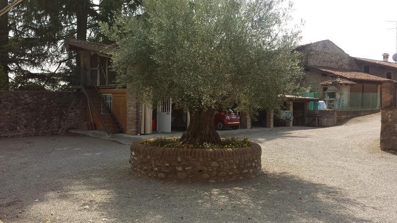 Cantina La Torre - 08