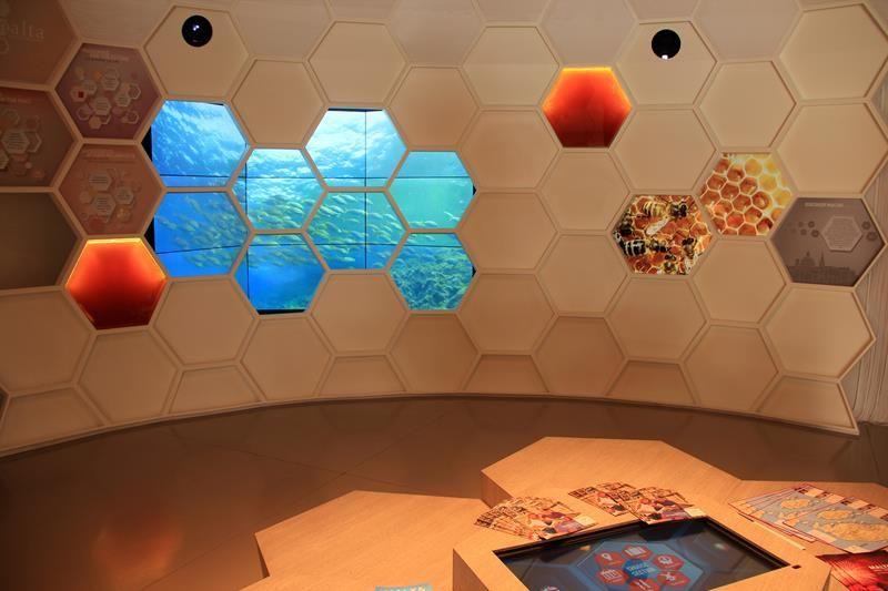 Cluster Bio Mediterraneo Expo 2015 - Malta 05