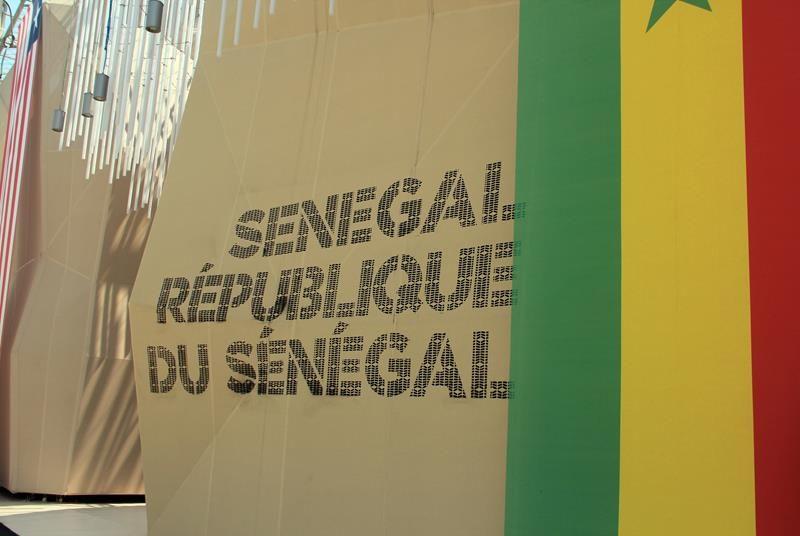 Cluster Zone Aride Expo 2015 - Senegal 01