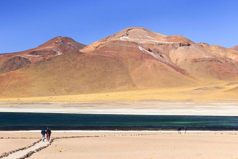 Lagunas_Altiplanicas-San_Pedro_de_Atacama