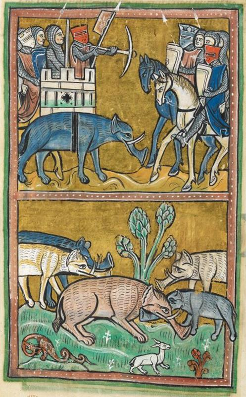 Elephants_-_British_Library_Royal_12_F_xiii - The Rochester Bestiary is a parchment manuscript dating from c. 1230–1240 - Public Domain