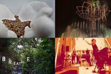 FOTO EXPO 2015 -15