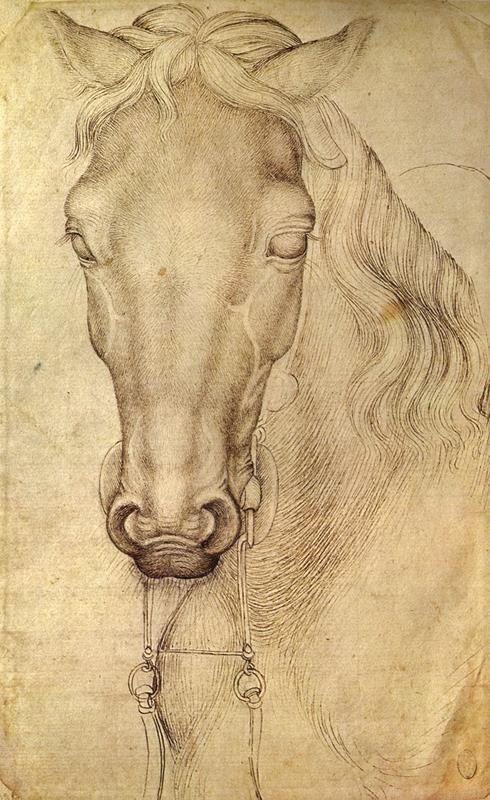 Pisanello, Testa di cavallo (Louvre 2360) - Public Domain via Wikipedia commons