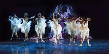 Il Lago dei Cigni, ovvero Il Canto al Teatro Carcano