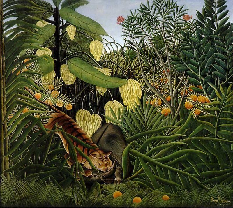 Henri Rousseau, Lotta fra tigre e bufalo (1908-1909), Cleveland Museum of Art, Cleveland, Ohio - Public Domain via Wikipedia Commons