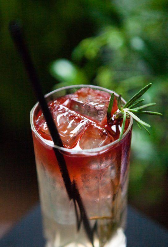 Gin Tonic del Vicolo (3)
