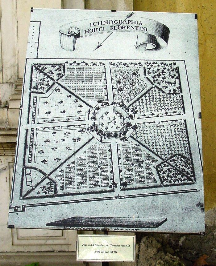 Mappa storica del Giardino dei Semplici di Firenze (public domain, via Wikimedia Commons).