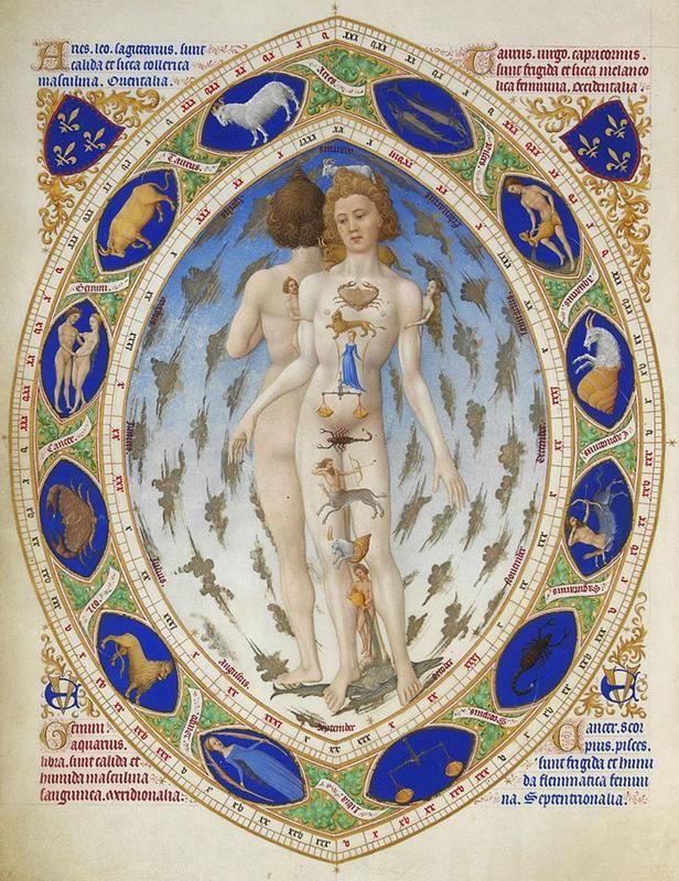 Très riches heures du Duc de Berry, Folio 14, Miniatura dell'Uomo Anatomico - Public Domain via Wikipedia Commons