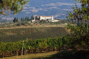 La tenuta Castello di ColleMassari .