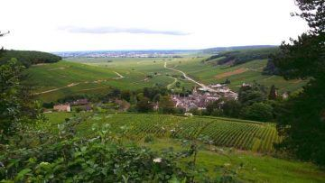 Pernand-Vergelesses,-Côte-d'Or,-Burgund_copyright_Welleschik_via_WikiCommons
