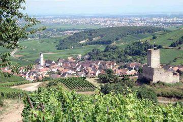 Panorama di Katzenthal, in Alsazia (Image: Par-Torsade-de-Pointes-(Travail-personnel-(Photo-personnelle))-[Public-domain],-via-Wikimedia-Commons).