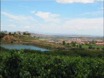 La Rioja_Di Gurrea (Opera propria) [GFDL o CC BY-SA 4.0-3.0-2.5-2.0-1.0 ], via Wikimedia Commons