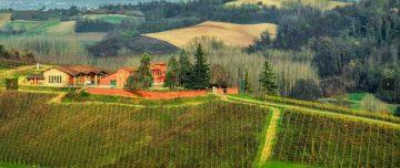 L'azienda vinicola La Mondianese, nel Monferrato.