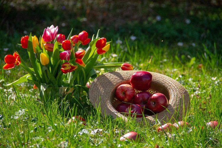 frutti antichi