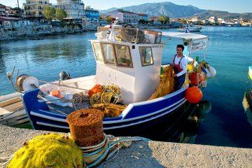 consegna pesce fresco milano