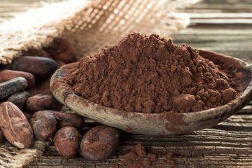 sciocolà modena cioccolato