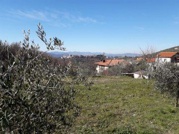 B&B Borgo Marciano_Panorama