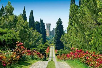 Il viale delle rose del Parco Giardino Sigurtà - [Image: Giulia Balestrieri [CC BY-SA 4.0], via Wikimedia Commons]