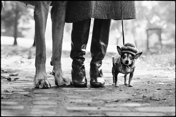 Autore: Elliott Erwitt New York City, USA, 1974 © Elliott Erwitt