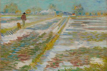 "Vincent van Gogh, ""Paesaggio con la neve"" (""Paysage enneigé""), Arles, febbraio, 1888; olio su tela, 38,3 × 46,2 cm; Solomon R. Guggenheim Museum, New York, Thannhauser Collection, Donazione Hilde Thannhauser, 84.3239 © Solomon R. Guggenheim Foundation, New York (SRGF)"